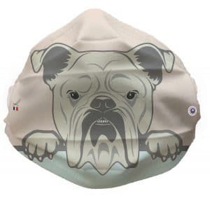 fun face 1 300x290 - Le Bulldog illustré