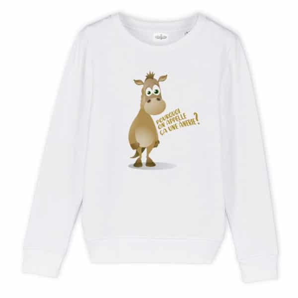 Sweat enfant original Anerie